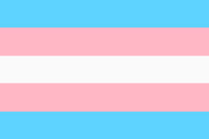Transgender Pride Flag illustration